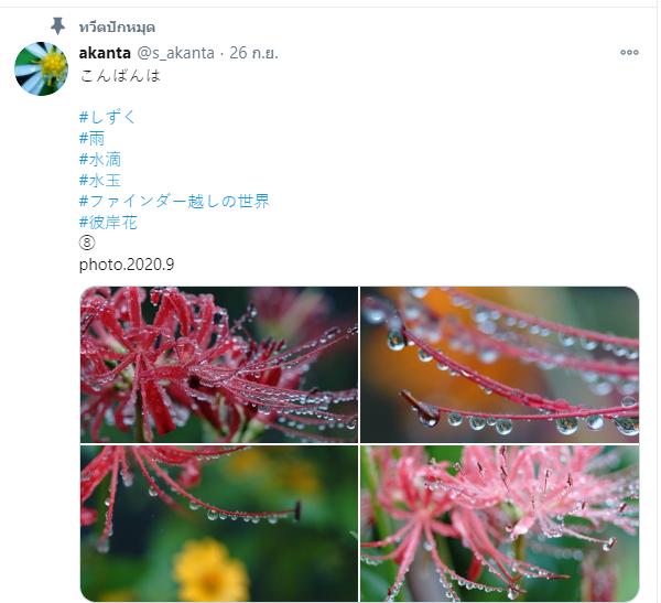 ทวิตเตอร์ช่างภาพ 02