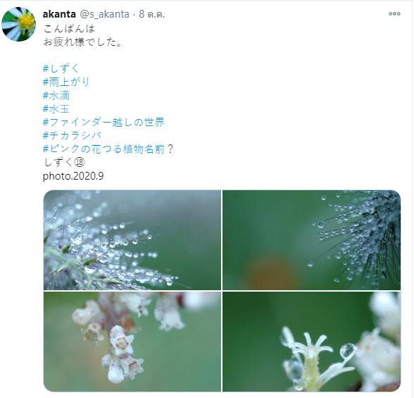 ทวิตเตอร์ช่างภาพ 03