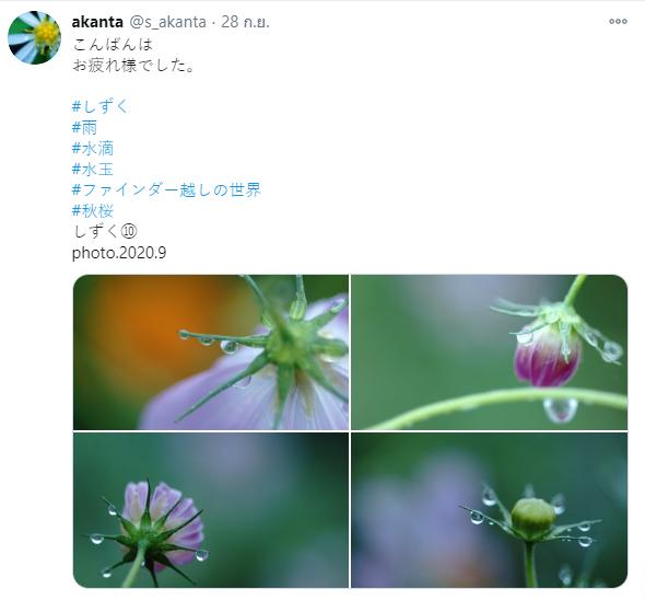 ทวิตเตอร์ช่างภาพ 04