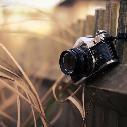 ฟิล์มกล้อง