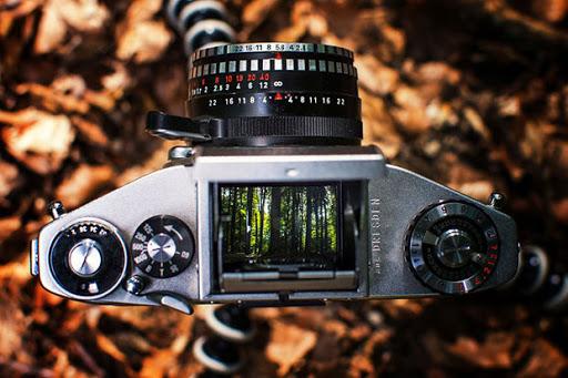 ฟิล์มกล้อง ลายน่ารัก